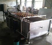 果蔬氣泡清洗機 大棗柑橘清洗設備