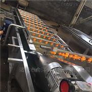 廠家供應優質不銹鋼甘藍噴淋氣泡清洗機
