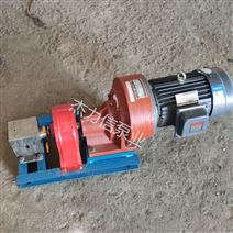 熔噴布計量齒輪泵 擠出機配套熔體泵