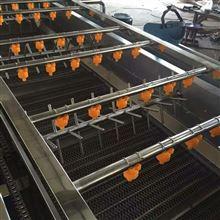 RM-4000蔬菜气泡清洗机设备