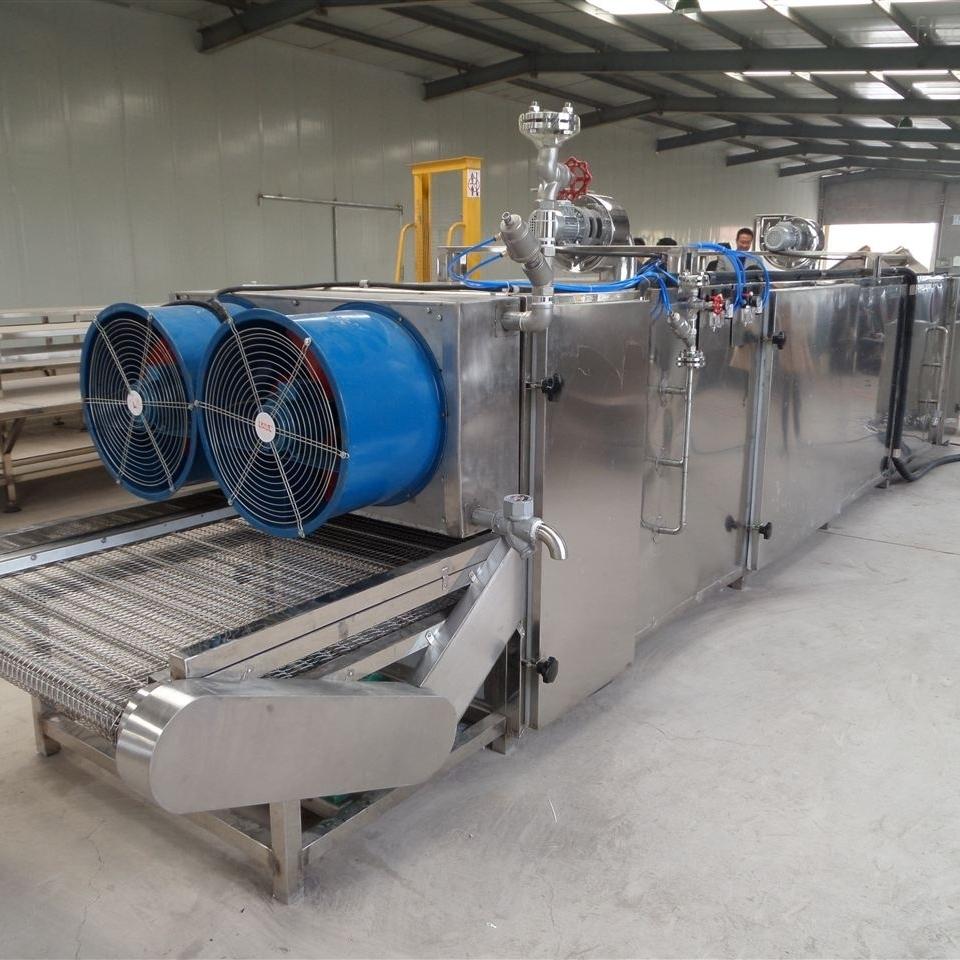 工厂果蔬烘干流水线加工设备
