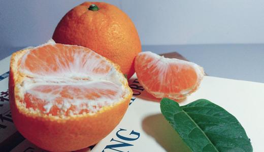 丑橘身价暴涨 其背后是运输、包装成本的上升