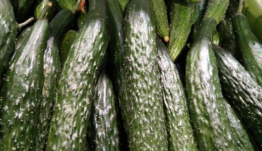 農業產業結構調整 冷鏈物流短板亟待補齊