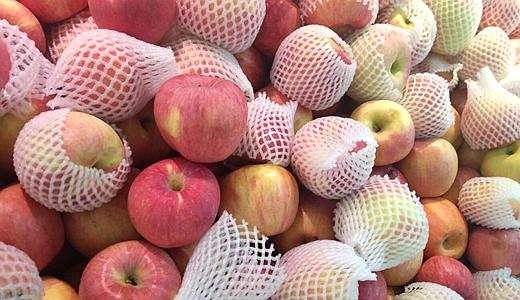 優化蘋果渣處理  精深加工變廢為寶